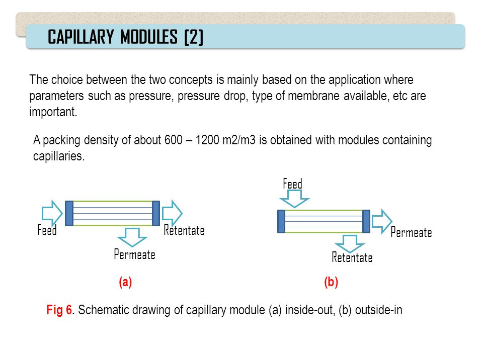 CAPILLARY MODULES [2]
